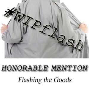 WIPflash-HM-300x300 (1)